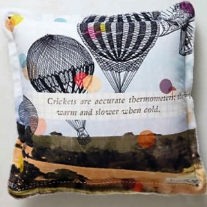 Hot air balloon pillow/purchased by a bargain ninja